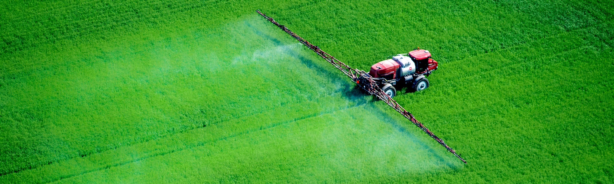 Pesticide Use, Health Impairments and Economic Losses Under Rational Farmers Behavior